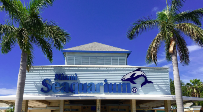 Why Not Take a Holiday Road Trip to the Miami Seaquarium