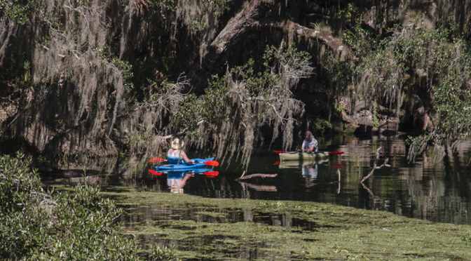 West Volusia's Wildlife and Parks: The Best of Florida's Great Outdoors